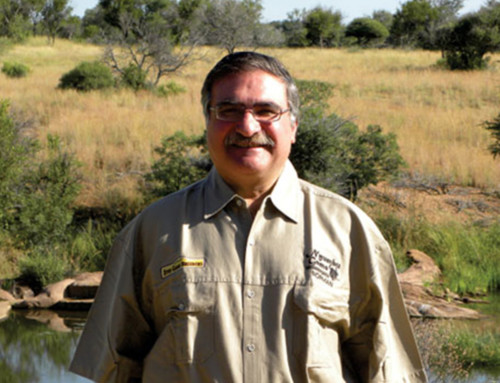 Norman Adami Joins Stud Game Breeders